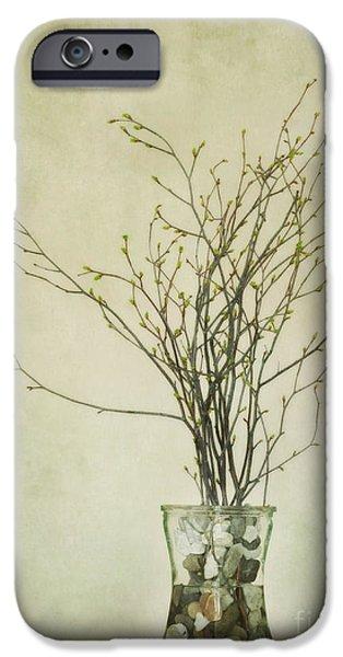 Glass Vase iPhone Cases - Spring Unfolds iPhone Case by Priska Wettstein