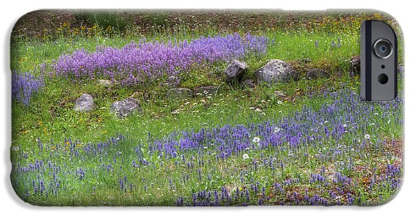 Spring Landscape iPhone Cases - Spring Wildflowers Square iPhone Case by Bill Wakeley