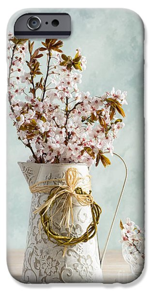 Interior Still Life iPhone Cases - Springtime Blossom iPhone Case by Amanda And Christopher Elwell