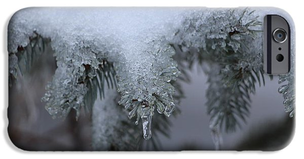 Snowy iPhone Cases - Spruce Icicles iPhone Case by Jari Hawk