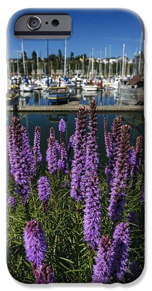 Boat iPhone Cases - Squalicum Harbor 1 iPhone Case by Paul Conrad