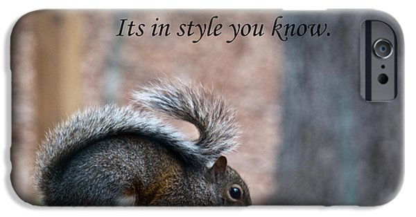 Caption iPhone Cases - Squirrel With Fur Collar iPhone Case by Douglas Barnett