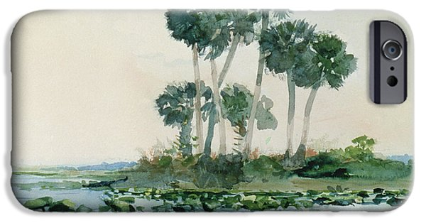 St. Johns River iPhone Cases - St Johns River Florida iPhone Case by Winslow Homer