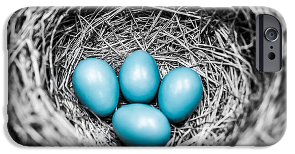 Selective Coloring Art iPhone Cases - Stand Out  iPhone Case by Parker Cunningham