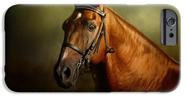 Horse iPhone Cases - Standing Strong iPhone Case by Jai Johnson