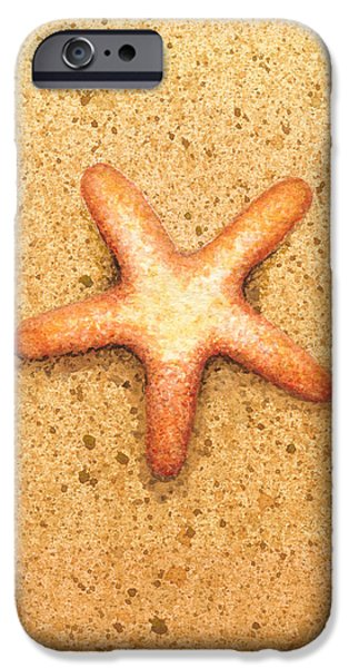 Watercolor iPhone Cases - Star Fish iPhone Case by Katherine Young-Beck