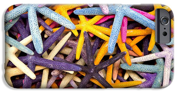 Marine iPhone Cases - Starfish iPhone Case by Anthony Totah