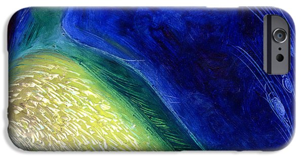Peacock iPhone Cases - Starlight iPhone Case by Nancy Moniz
