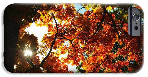 Abstract Digital iPhone Cases - Stars in autumn iPhone Case by SK Pfphotography