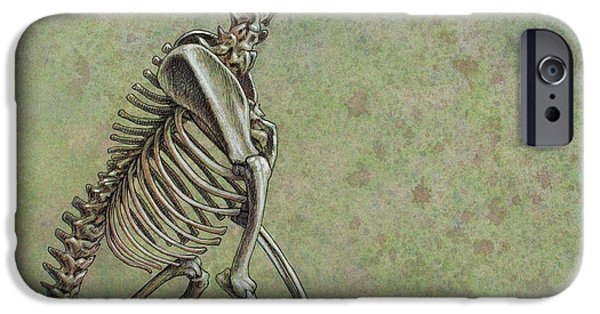 Animals Drawings iPhone Cases - Stay... iPhone Case by James W Johnson