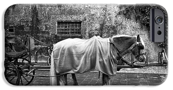 Horse And Buggy iPhone Cases - Staying Warm in Salzburg iPhone Case by John Rizzuto