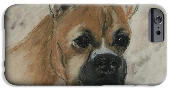 Dogs iPhone Cases - Steady Goes It iPhone Case by Cori Solomon