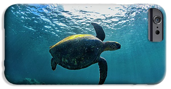 Under Water. Nature iPhone Cases - Stealth Turtle iPhone Case by Sean Davey