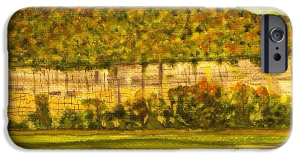 Arkansas iPhone Cases - Steele Creek Cliffs iPhone Case by Larry Farris