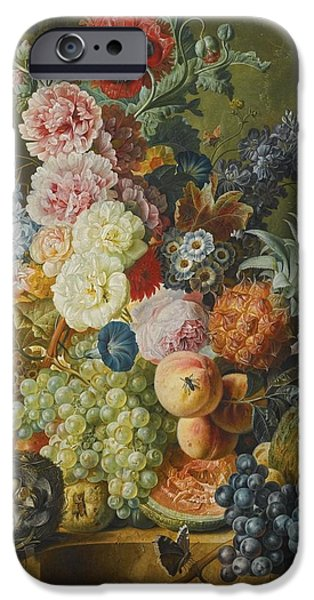 Ledge iPhone Cases - Still Life Of Fruits And Flowers iPhone Case by Celestial Images