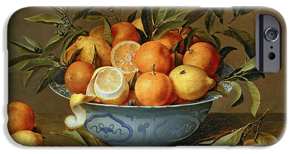 Fruit Tree iPhone Cases - Still Life with Oranges and Lemons in a Wan-Li Porcelain Dish  iPhone Case by Jacob van Hulsdonck