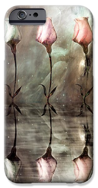 Trio iPhone Cases - Still iPhone Case by Photodream Art