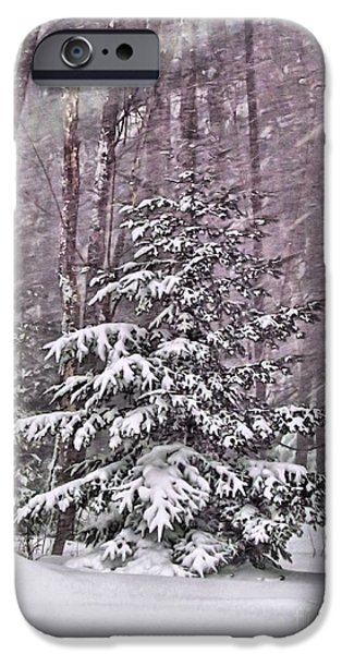 Snow iPhone Cases - Still Standing Tall iPhone Case by Elizabeth Dow