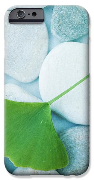 stones and a gingko leaf iPhone Case by Priska Wettstein
