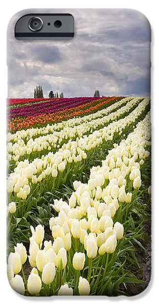 Storm over Tulips iPhone Case by Mike  Dawson