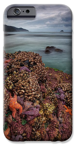 Ocean Art Photography iPhone Cases - Stormy Life at Sea iPhone Case by Darren  White