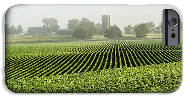 Agriculture iPhone Cases - Straight Rows-Early Morning iPhone Case by Michael Ciskowski