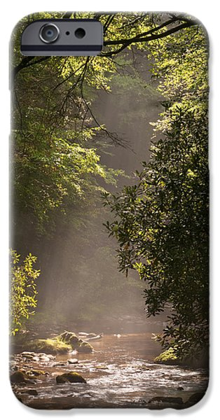 Tennessee River iPhone Cases - Stream Light iPhone Case by Steve Gadomski