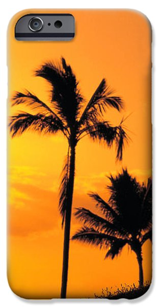 Stretching At Sunset iPhone Case by Dana Edmunds - Printscapes