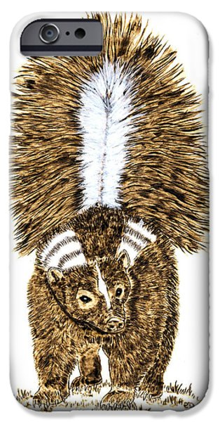 Water Colors Pyrography iPhone Cases - Striped Skunk iPhone Case by Pat Sloss