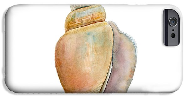 Recently Sold -  - Snake iPhone Cases - Strombus Vittatus Shell iPhone Case by Amy Kirkpatrick