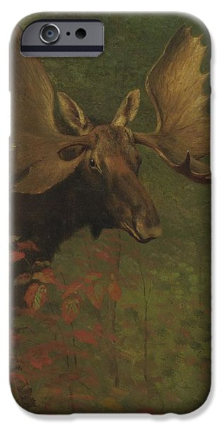 Nature Study Paintings iPhone Cases - Study  of  a  moose iPhone Case by Albert  Bierstadt