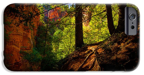 Red Rock iPhone Cases - Subway Forest iPhone Case by Chad Dutson