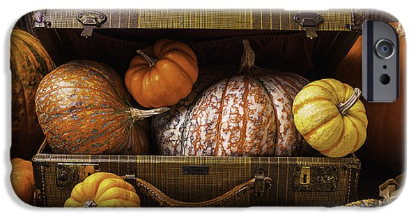 Gourd iPhone Cases - Suitcase Full Of Pumpkins iPhone Case by Garry Gay