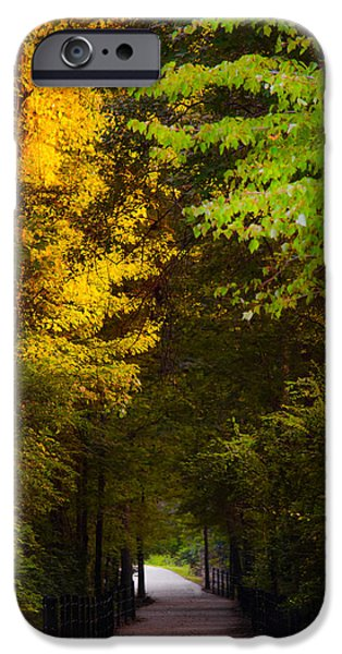 Pathway iPhone Cases - Summer and Fall Collide iPhone Case by Parker Cunningham