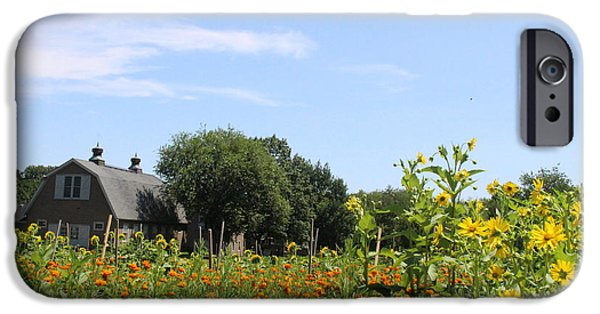 Built Structure iPhone Cases - Summer at the Old Queens Farm iPhone Case by  Photographic Art and Design by Dora Sofia Caputo