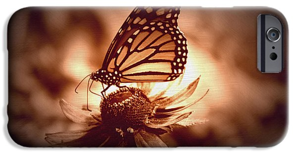 Invertebrates Mixed Media iPhone Cases - Summer Floral With Monarch Butterfly 01 iPhone Case by Thomas Woolworth
