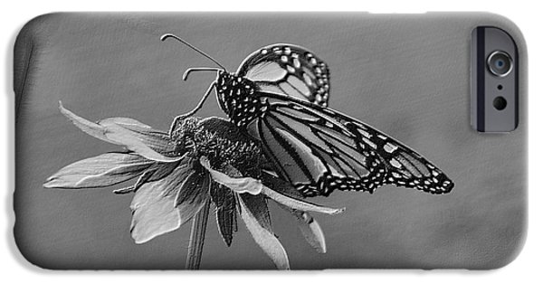 Invertebrates Mixed Media iPhone Cases - Summer Floral With Monarch Butterfly 04 BW iPhone Case by Thomas Woolworth