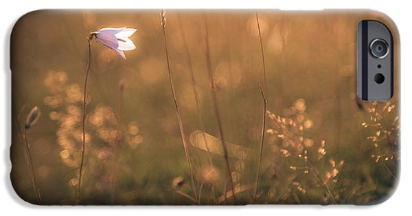 Bokeh iPhone Cases - Summer glow iPhone Case by Chris Fletcher