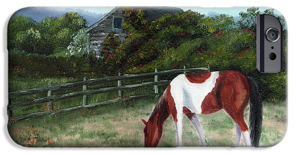 Half Moon Bay iPhone Cases - Summer Morning in the Country iPhone Case by Laura Iverson
