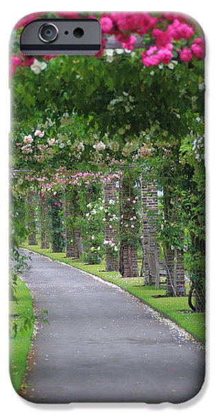 Pathway iPhone Cases - Summer Pathway of Roses iPhone Case by Rumyana Whitcher