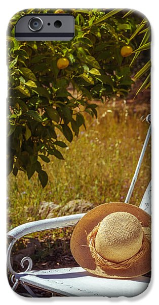 Summer iPhone Cases - Summer Straw Hat iPhone Case by Amanda And Christopher Elwell