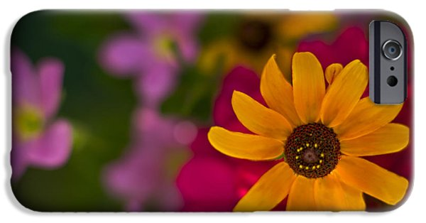 Nature Abstract iPhone Cases - Summer Sunshine by fleblanc iPhone Case by F Leblanc