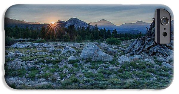 Meadow Photographs iPhone Cases - Sunburst In Tuolumne iPhone Case by Bill Roberts