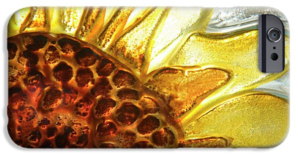 Glass Wall iPhone Cases - Sunburst Sunflower iPhone Case by Jerry McElroy