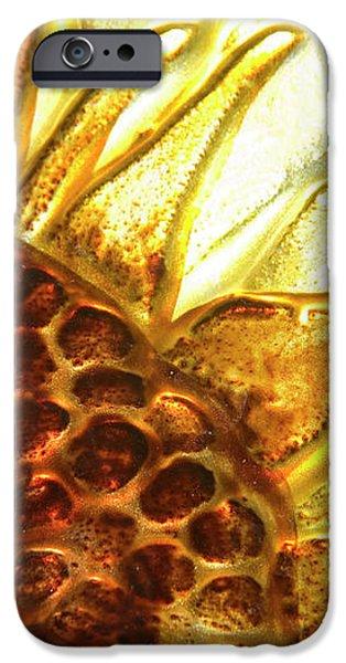 Sunburst Sunflower iPhone Case by Jerry McElroy