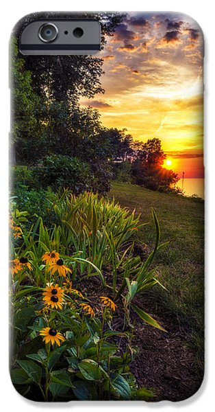 Botanical iPhone Cases - Sundown iPhone Case by Mark Papke