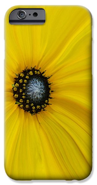 Abstract Sunflower iPhone Cases - Sunflower Abstract iPhone Case by Ernie Echols