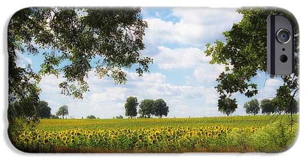 Abstract Sunflower iPhone Cases - Sunflower field iPhone Case by SK Pfphotography
