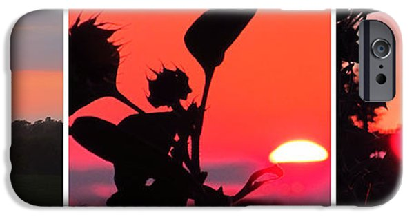 Morning iPhone Cases - Sunflower Garden And Sunset Collage Two iPhone Case by Tina M Wenger