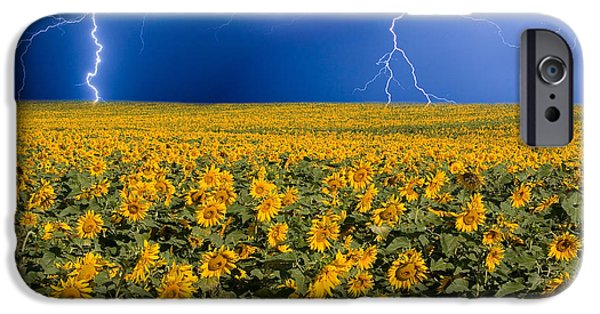 County iPhone Cases - Sunflower Lightning Field  iPhone Case by James BO  Insogna